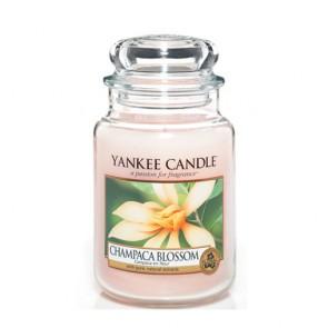 """YC didelė žvakė stiklainėlyje """"CHAMPACA BLOSSOM"""" 1302673E"""
